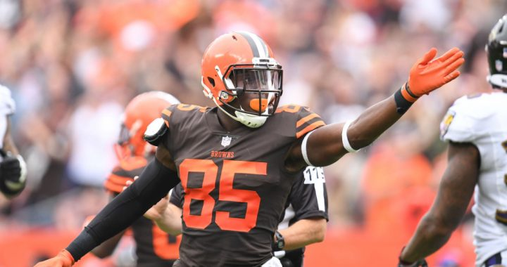 What Are The Browns Options at Tight End?